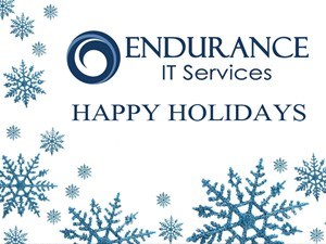 Endurance 2017 Holiday Party